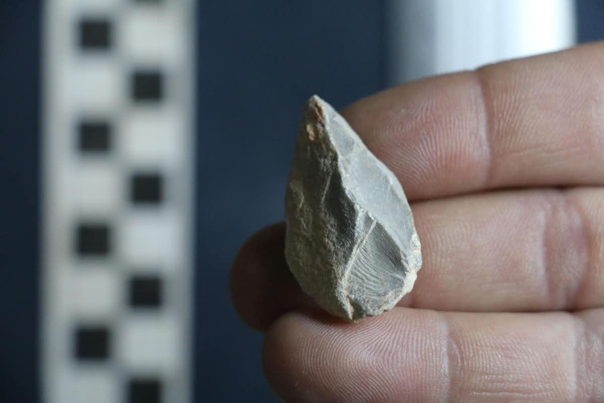 """Evidence Found In Ancient Cave """"Hotel"""" Indicates Humans May Have Arrived In The Americas 30,000 Years Ago"""